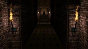 Corridoio medievale scuro del castello stock footage