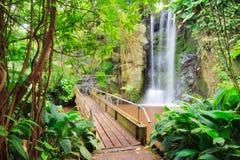 Corridoio tropicale fotografie stock libere da diritti