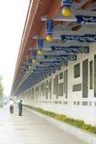 The corridor Royalty Free Stock Image