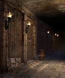 Corridor in a castle dungeon. Corridor with torches, barrels and skulls in a castle dungeon Royalty Free Stock Image