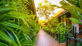 Corridor in a comfortable hotel. Thailand stock footage