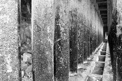 Corridor of concrete pillars black and white Royalty Free Stock Images