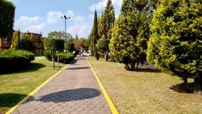 Corridor through some trees at Cholula Mexico stock photo