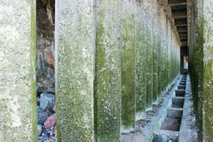Corridor of green concrete pillars Royalty Free Stock Photography