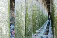 Corridor of green concrete pillars Royalty Free Stock Photography