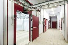 Corridor in meat refrigerators Stock Photography