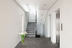 Corridor of a modern apartment building Stock Photography
