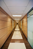 Corridor in modern office Royalty Free Stock Image