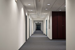 Corridor in the Office. Corridor in the modern office with doors Royalty Free Stock Images