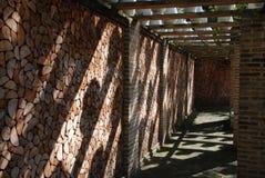 Corridor. The corridor with pot shadow Royalty Free Stock Photos