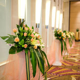 Corridor with row of flowers Stock Images