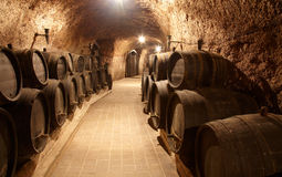 Corridor in winery. With old wine cask Stock Images