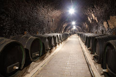 Corridor in winery underground Royalty Free Stock Photo