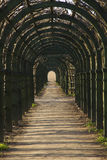 The corridor from wooden arch. With grass Royalty Free Stock Photo