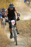 Corridore della bici Immagini Stock