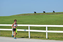 Corridore di maratona Fotografia Stock