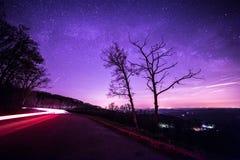 Corridore di velocità Fotografie Stock