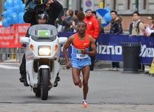 Vincitore maschio maratona della città 2013 di Milano fotografie stock libere da diritti