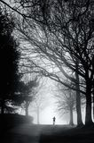 Corridore solo su Misty Morning fotografia stock libera da diritti