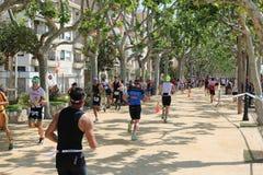 Corridori sani di esercizio di sport del triathlete di triathlon fotografia stock libera da diritti