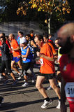 Corridori sull'inizio della maratona mezza Immagine Stock