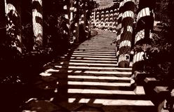 corridorof cień Fotografia Stock