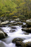 Corriente ahumada de la caída de la montaña Imagen de archivo libre de regalías