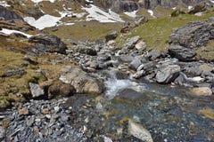 Corriente clara en las montañas de la primavera Imagenes de archivo