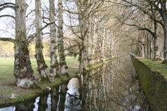 Corriente confinada por los árboles Foto de archivo libre de regalías