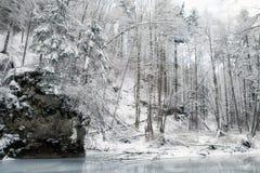 Corriente congelada en bosque del invierno Imagen de archivo