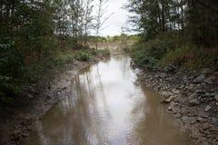 Corriente contaminada Borneo Foto de archivo