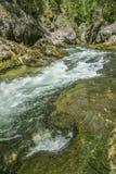 Corriente de conexión en cascada de la montaña Fotografía de archivo libre de regalías