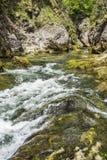 Corriente de conexión en cascada de la montaña Fotos de archivo libres de regalías