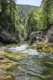 Corriente de conexión en cascada de la montaña Foto de archivo libre de regalías