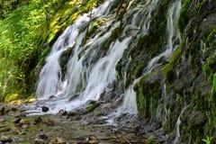 Corriente de conexión en cascada de la montaña Imagen de archivo libre de regalías