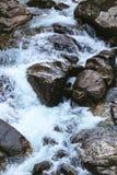 Corriente de Forest Landscape del río y de las rocas Foto de archivo libre de regalías
