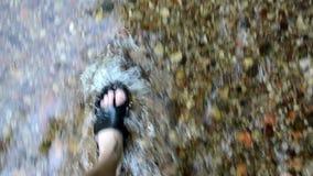 Corriente de imitación de la corriente del arroyo del parque del paseo de los zapatos del balanceo de la pierna almacen de metraje de vídeo