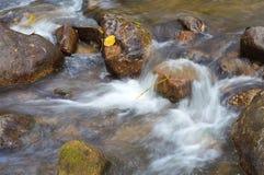 Corriente de la cascada Fotos de archivo libres de regalías