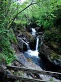 Corriente de la cascada de Ingleton Fotos de archivo