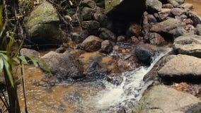 Corriente de la montaña con el agua potable almacen de metraje de vídeo