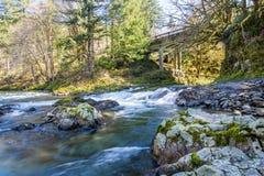 Corriente de la montaña con Moss Covered Boulders foto de archivo libre de regalías