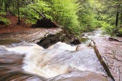 Corriente de la montaña de Pennsylvania Fotos de archivo libres de regalías