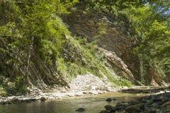 Corriente de la montaña en el bosque Fotos de archivo