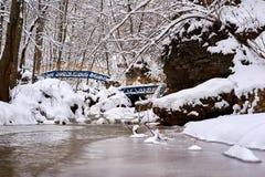 Corriente de la montaña en invierno imagen de archivo