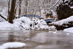 Corriente de la montaña en invierno fotos de archivo libres de regalías