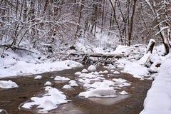 Corriente de la montaña en invierno fotografía de archivo libre de regalías
