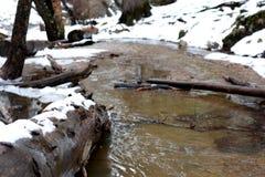 Corriente de la montaña en invierno Fotografía de archivo