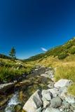 Corriente de la montaña en las montañas de Transylvanian Imagenes de archivo