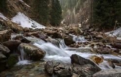 Corriente de la montaña en la primavera Foto de archivo libre de regalías