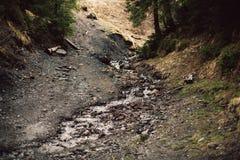 Corriente de la montaña en primavera Imágenes de archivo libres de regalías